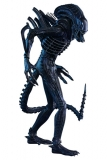 Figurka Alien Warrior - Aliens Movie Masterpiece Action Figure 1/6