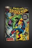 Obraz The Amazing Spider-Man #120 - Incredible Hulk - Boxed Canvas Edition