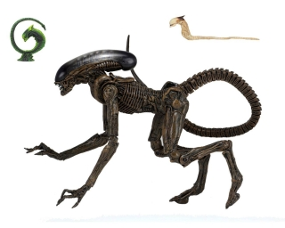 Figurka Ultimate Dog Alien - Alien 3 Action Figure